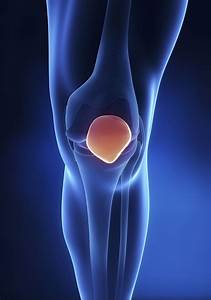 Diagram Of A Patella