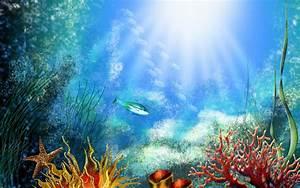 Aquarium Backgrounds 19001 1920x1200 px ~ HDWallSource.com