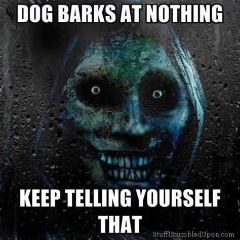 Barking Dog Meme - truly terrifying dog barks at nothing keep telling yourself that funny pinterest dog
