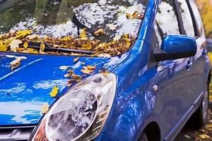 Modriger Geruch Entfernen : auto so vermeidet man wertverlust you big ~ Frokenaadalensverden.com Haus und Dekorationen