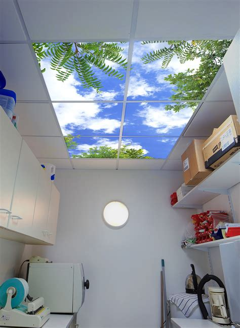 Decorative Ceiling Panels by Ceiling Can Be Decorated With Decorative Ceiling Light