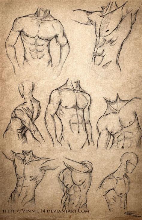Quot Male Body Sketches Quot Vinnie Deviantart Com Repinned By Blickedeeler De Disegno