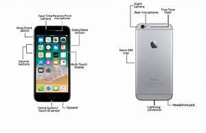 Apple Iphone 6    6 Plus Diagram