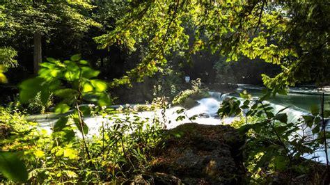 Englischer Garten Wasserfall by Englischer Garten Wasserfall Timelapse