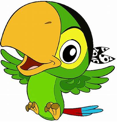 Jake Pirates Neverland Pirate Clipart Skully Parrot