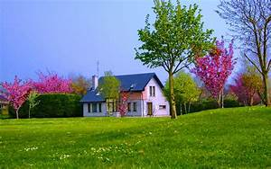 House in Springtime Full HD 壁纸 and 背景