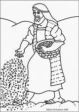 Parable Sower Coloring Pages Seed Bible Mustard Children Seeds Parabole Chart Ebibleteacher Parables Version Sheet Stories Sunday Colouring Sheets Sowing sketch template
