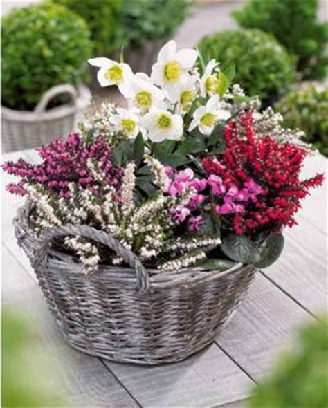 de jardinage pourquoi pas un jardin fleuri pendant l