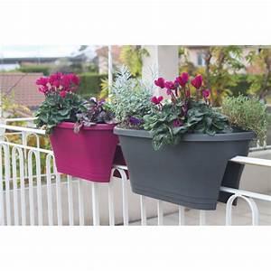 Bac A Fleur Balcon : jardini re de balcon corsica fushia jardin et saisons ~ Teatrodelosmanantiales.com Idées de Décoration