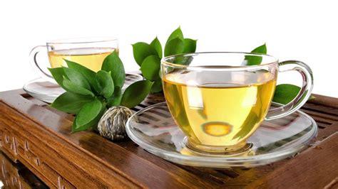 white tea caffeine white tea caffeine content white tea health benefits