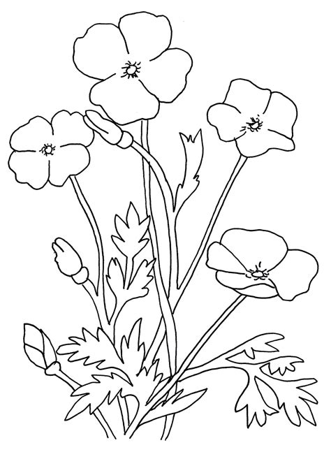flowers drawing  kids   clip art