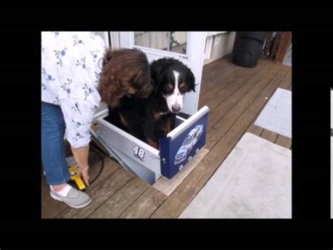 canine stair lift 187 acorn stairlifts home