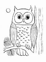Owl Coloring Pages Sheets Adult Adults Baby Young Cute Simple Drawing Cool Printable Flying Difficult Owls Colouring Sheet Related Getcolorings sketch template