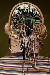 Humanoid Robot Head - Stock Image T280  0242