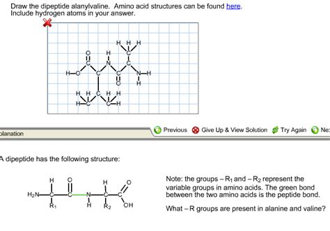 Draw The Dipeptide Alanylvaline Amino Acid Structures