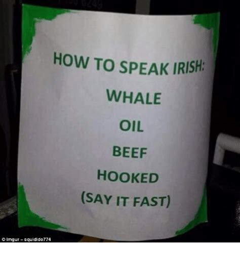 How To Speak Irish Whale Oil Beef Hooked Say It Fast © Lmgursquidido774  Beef Meme On Sizzle