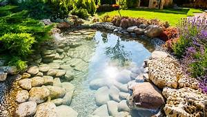 comment choisir son bassin de jardin au jardin d39ys With beautiful amenagement jardin avec bassin 7 bassin de jardin