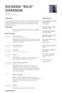 server and bartender resume server resume sles visualcv resume sles database