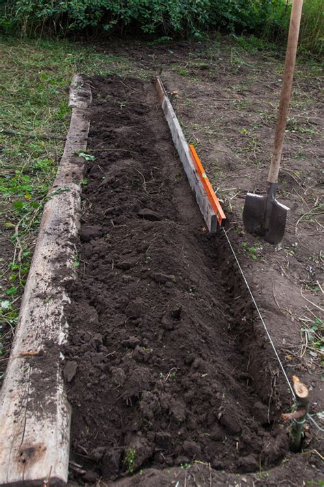how to test your soil harvest to table