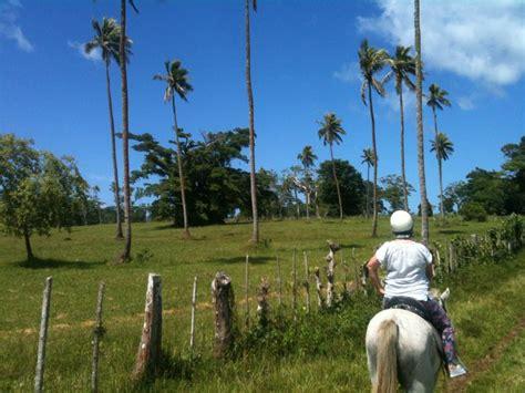 tanna island vanuatu images  pinterest