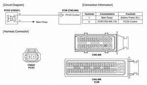 Kia Forte  Purge Control Solenoid Valve  Pcsv  Circuit