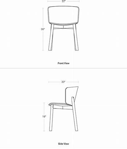 Chair Dining Dimensions Buddy Curved Wood