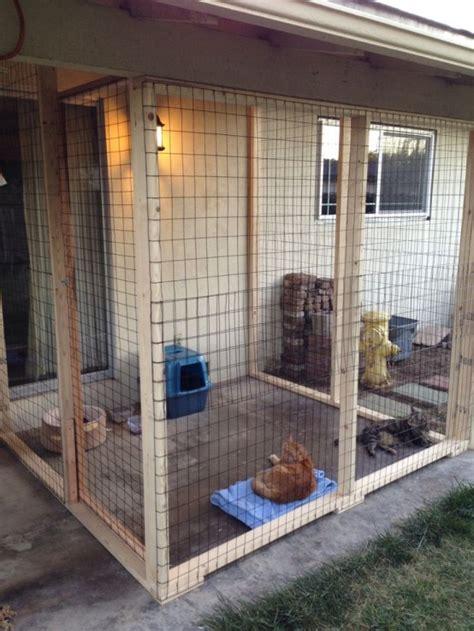 cat enclosure area catio safe cats run areas gatti dog chat gatil catios cages organized digsdigs gatto recinto um kennel