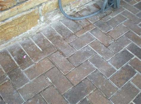 services paver sealing  repair seal  lock tampa