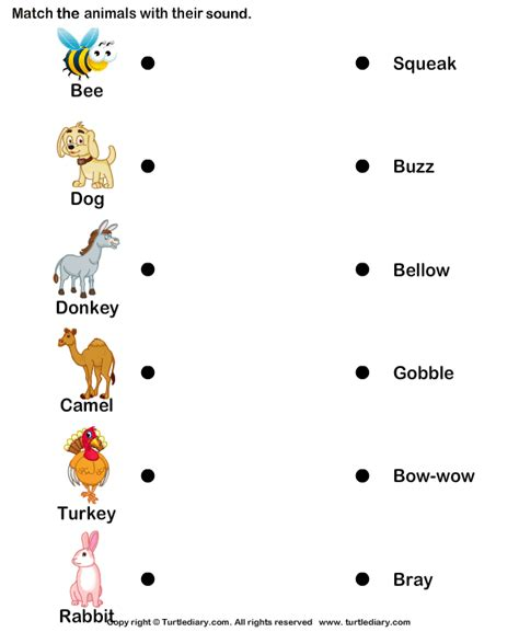 farm animals  sounds worksheet turtle diary