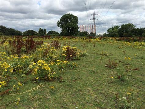 redbridge pylon perimeter fence upgrade