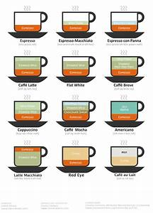 The Illustrated Guide S  To Over Complicated Coffee Drinks
