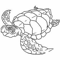 Top 10 Free Printable Cute Sea Turtle Coloring Pages ...