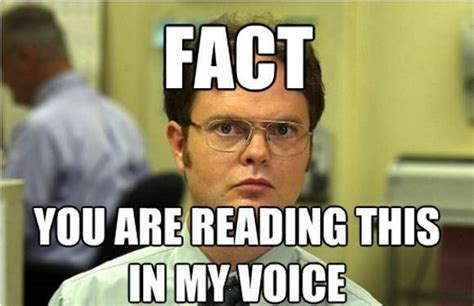 Dwight Schrute Memes - funny dwight schrute memes