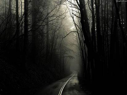 Gothic Wallpapers Goth Dark Backgrounds Background Trees