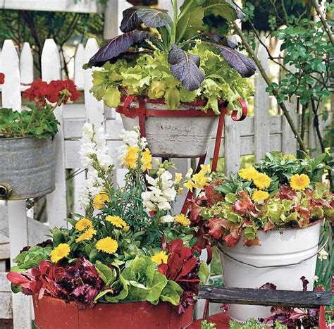 Große Blumenkübel Bepflanzen  60 Ideen, Bilder Und Vorschläge