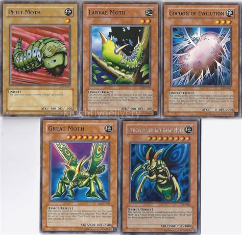 siege cocoon authentic weevil battle city deck perfectly great moth
