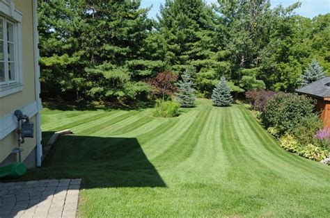 hire landscaper 10 questions to ask when hiring a landscaper kerr kerr landscaping