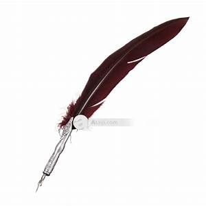Quill Pen Writing In Book Animation Pictures