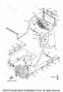 Wiring Diagram For Yamaha Wolverine