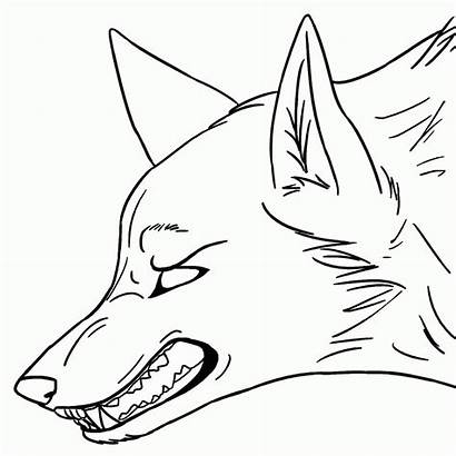Coloring Wolf Anime Pack