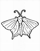 Moth Coloring Printables Coloringbay Insect sketch template