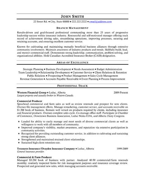 Insurance Resume Sle by Top Insurance Resume Templates Sles