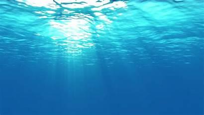 Underwater Desktop Wallpapers Sea 1080p Pixelstalk