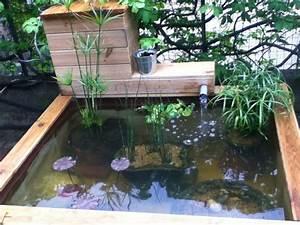 Bassin Hors Sol Avec Cascade. petit bassin de jardin avec cascade ...