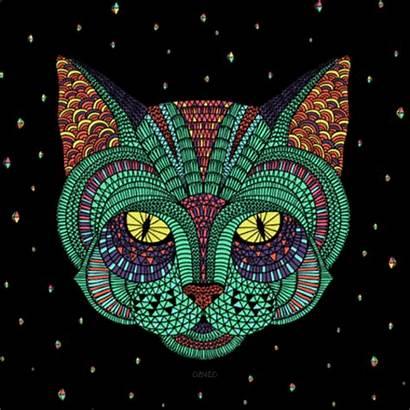Psychedelic Cat Animated Trippy Lsd Psicodelia Drugs