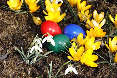 Tipps Für Den Garten by Osterdeko F 252 R Den Garten Tipps Gartendekoration Garten
