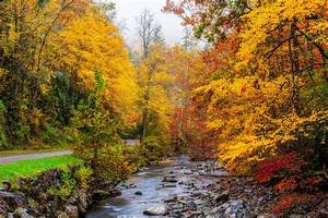 Usa, Autumn, Parks, Forests, Stream, Great, Smoky