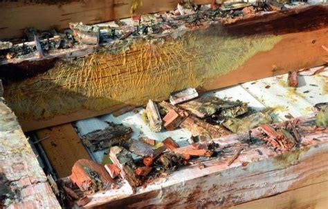 Flachdaecher In Holzbauweise flachd 228 cher in holzbauweise mit zwischensparrend 228 mmung