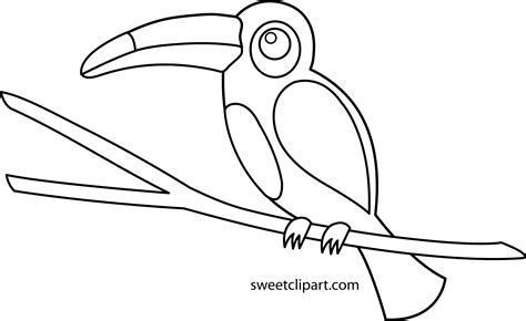 toucan clipart black and white toucan coloring page free clip