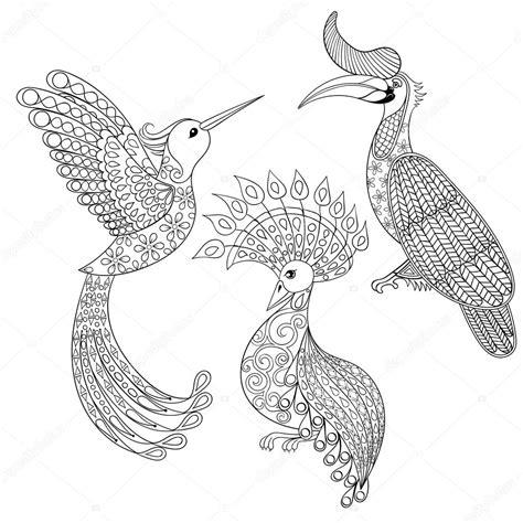 2 Vogels Kleurplaat by Kleurplaat Met Vogels Neushoorn Kolibries En Exotische